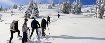 Snowshoewalking in Valle di Ledro