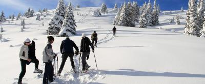 Snowshoewalking in Valle di Ledro