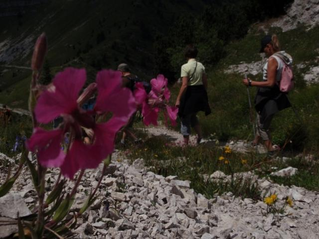 HIKING PROGRAM - AROUND MONTE TREMALZO