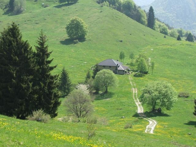 HIKING PROGRAM - ALPINE PASTURES OF MALGA GIU' AND SAN MARTINO
