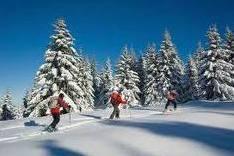 1° SNOWSHOES WALK