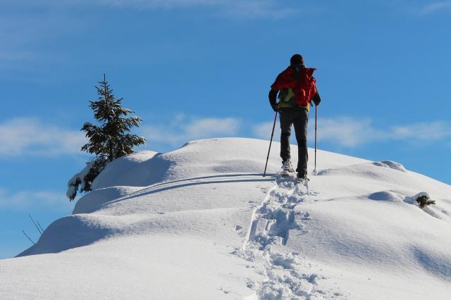 SNOWSHOES WALK